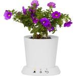 USB-Flowerpot